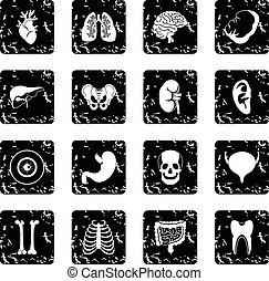 Human organs icons set in grunge style isolated on white...
