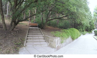 Bench in citys park - Granite staircase in park recreation...