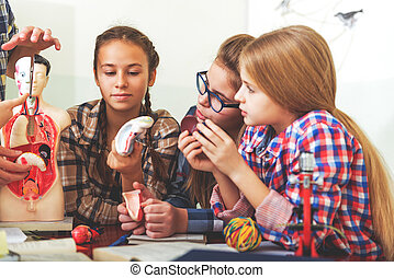 Attentive children at necessary lecture - Curious girls are...