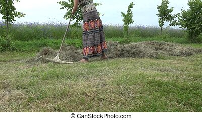 Female gardener in beautiful dress rake hay dry grass in...