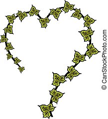 Ivy heart hand drawn