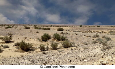 Stone desert (typical arid landscape), Jordan, Middle East