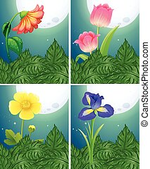 Different types of flowers on fullmoon night illustration