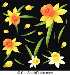 Seamless background with daffodil flowers illustration