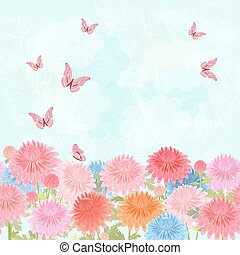 field of blooming chrysanthemum with flying butterflies for your