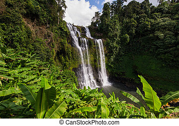 waterfall in deep forest at Pakse Laos