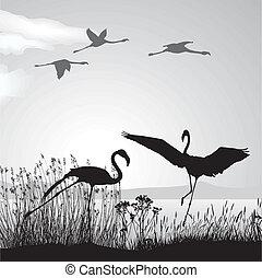 Flamingo on lake shore - Vector illustration silhouettes...