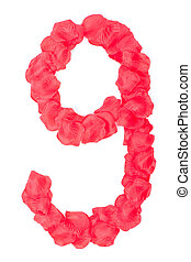 Rose petals as number isolated on white background