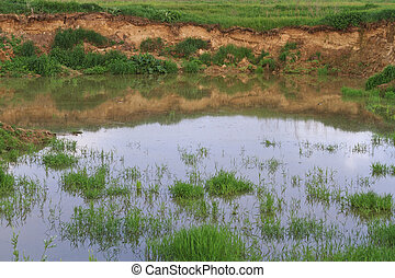 sand pit filled with water summer landscape,water,green...