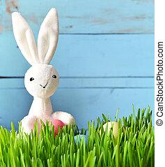 很少, 蛋, 綠色, 草, 復活節,  bunny