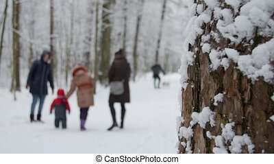 Winter park with snow covered trees, a family with children walking in the park.