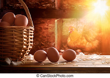 Freshly picked eggs in basket with chicken within henhouse...