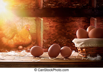 Freshly picked eggs in basket within a henhouse background -...