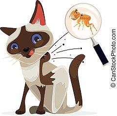 Cat character scratches fleas off. Vector flat cartoon...