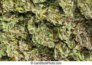 Cannabis buds background flatlay - Dry green organbic...