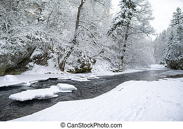 Frozen river in winter forest - Frozen river Hornad in snowy...