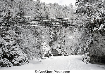 Empty bridge over frozen river in forest - Empty bridge over...