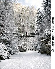 Frozen stream in winter forest. Hiker on bridge - Frozen...