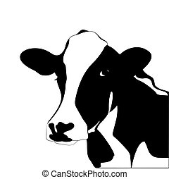 Portrait big black and white cow vector - Portrait of a big...