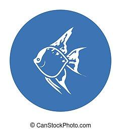 Angelfish common fish icon black. Singe aquarium fish icon...