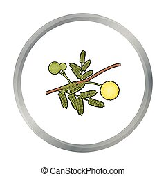 Yellow mimosa flower icon in cartoon style isolated on white...