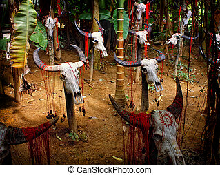 ritual place - place of ethnic tribal ritual ceremonies...