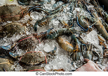 Fresh seafood for buffet dinner