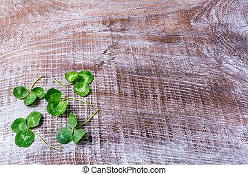 Clover on dark old wooden background. St. Patricks day...