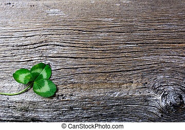 St. Patrick day greeting card with three-leaves clover Irish...