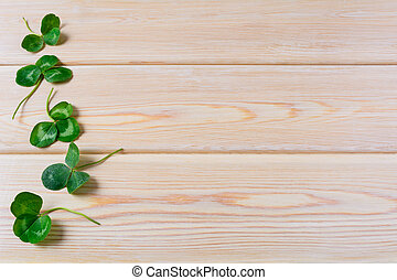 Three-leaves clover on wooden background. St. Patricks day...