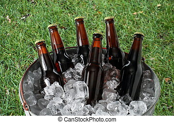Six Pack of Beer in Ice Bucket - A six pack of homebrew beer...