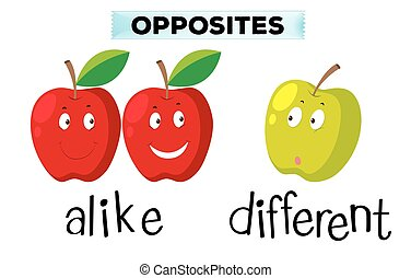 Opposite words for alike and different illustration