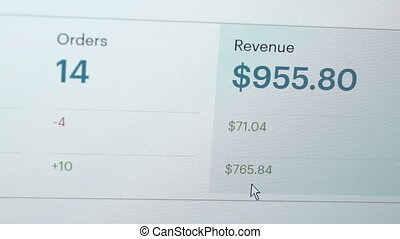 Computer Screen Website Revenue Closeup - Close up shot of a...