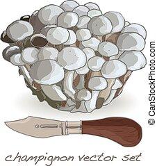 champignon vector set illustration on white background