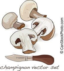 champignon vector set illustration on white background