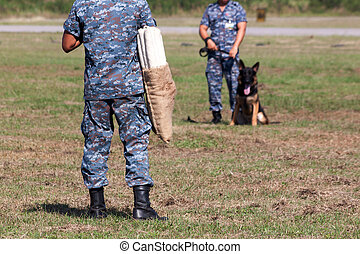 Soldiers from the K-9 dog unit works with his partner to...