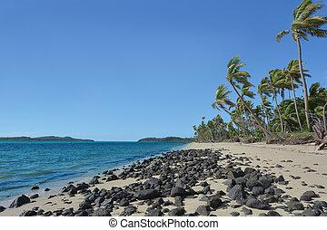 Landscape of a wild beach on a remote tropical island in Fiji