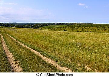 Rural landscape. Dirt road