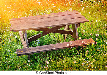 Wooden picnic place on summer green field