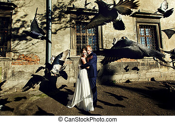 Pigeons fly behind bride and groom hugging in the rays of...