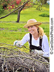 Young woman working in orchard, after tree pruning, pile of...
