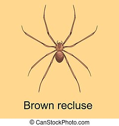 Spiders cartoon set, dangerous insects collection - Flat...