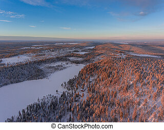 Aerial view of winter snowscape and forest.