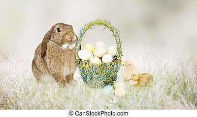 Easter Bunny and Chicks With Basket of Eggs - Cute Easter...