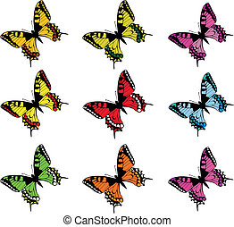 Collection of vector butterflies