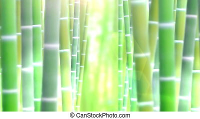 Bamboo forest, Nature, Green,