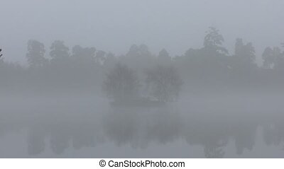 Fog. trees reflected in a lake.