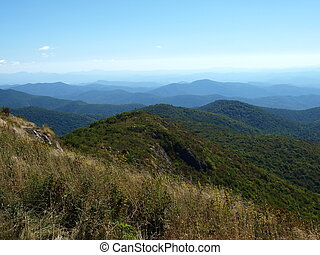 Along the trail - View along the Art Loeb Trail in the...