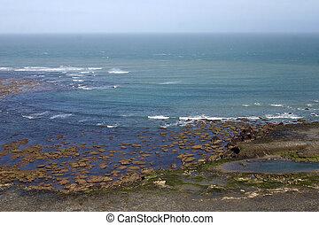 Argentine - Landscape in Peninsula de Valdes, Patagonia,...