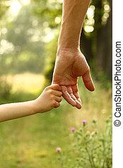 the parent holds the hand of a child - the parent holds the...